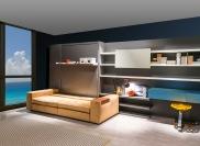 plan-ideas-murphy-bed-sofa-combo